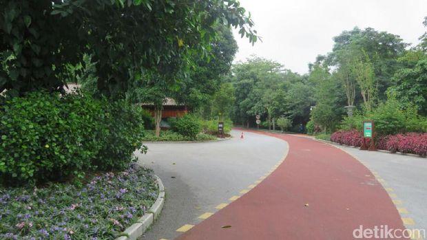 Suasana Kota Nanning dari Taman Qingxiu
