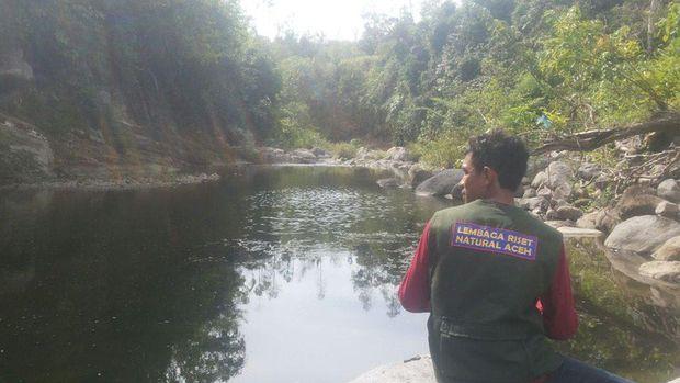 Ini Dia Tujuan Penelitian Kelelawar 'Vampir' Raksasa di Aceh Besar