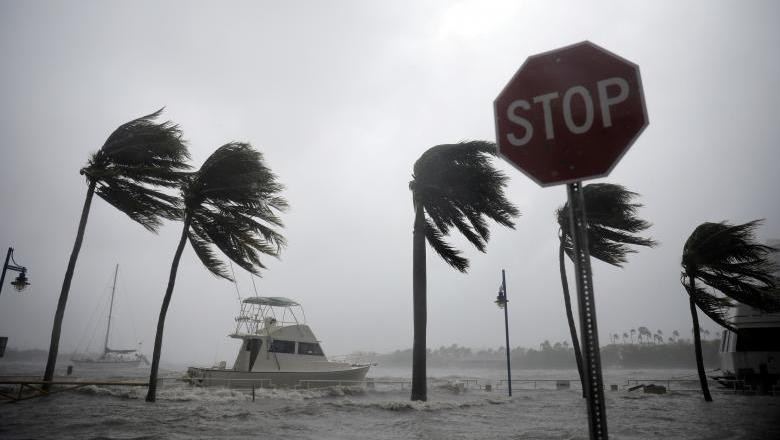 Badai Irma Tewaskan 3 Orang di Florida, Trump: Ini Monster Besar