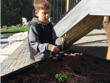Berkebun juga merupakan aktivitas yang menyenangkan dan sehat untuk anak. (Instagram: frankferragine)