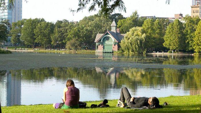 Central Park di New York (Foto: cnn.com)