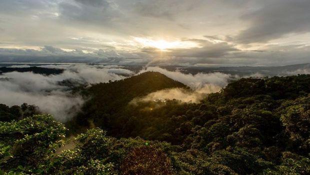Inikah Resor Paling Ramah Lingkungan di Bumi?