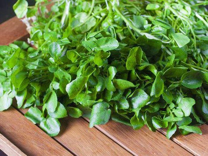 Sayuran berdaun hijau adalah salah satu makanan yang bisa penuhi kebutuhan kalsium. Foto: Getty Images