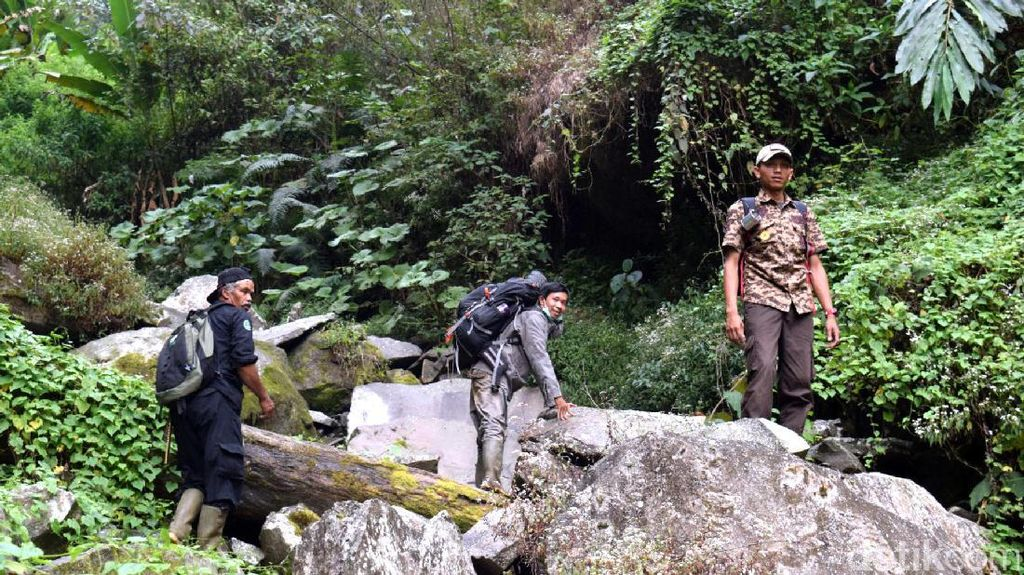 Cerita Mistis Guru SMA Saat Tersesat di Gunung Gede
