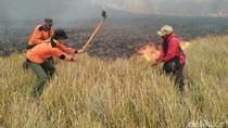 Kebakaran Padang Ilalang Bromo Tak Bahayakan Kawasan Konservasi
