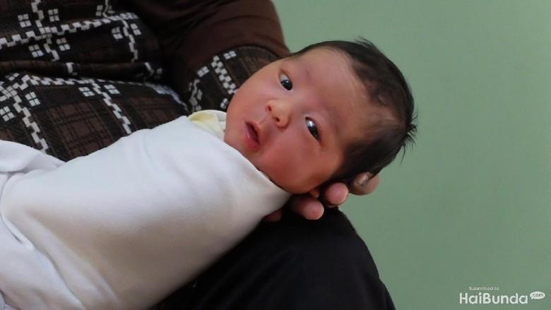 Begini Jadinya Kalau Ayah yang Kasih Nama si Kecil (Foto: Dhani Irawan/detikcom)