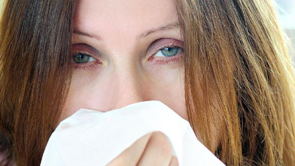 5 Hal Penting yang Harus Anda Ketahui Soal Flu Australia H3N2