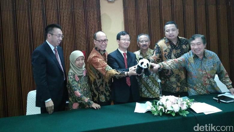 Kedubes China: Semoga Giant Panda Bawa Kegembiraan bagi Indonesia