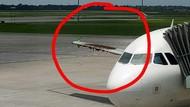 Pesawat Diserang Lebah di Bandara, Citilink: Habitatnya Terganggu