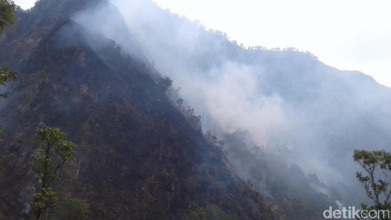 Hutan Terbakar, Pendakian Gunung Muria Ditutup