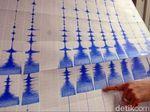 Gempa 5,7 SR Terjadi di Maluku Tenggara, Tak Berpotensi Tsunami