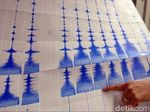 Gempa 5,9 SR Guncang Pegunungan Bintang Papua