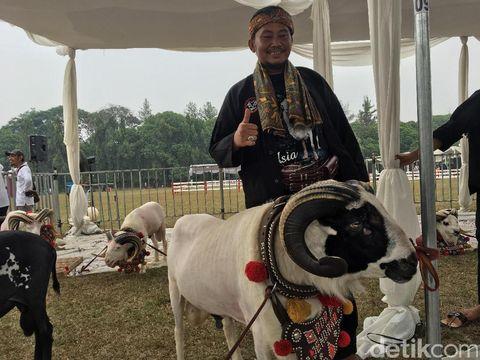 Kisah Sofian, Peternak Domba Sukses dengan Omzet Rp 400 Juta