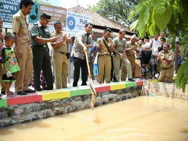 Parit di Kota Semarang Disulap Jadi Tempat Pembibitan Ikan
