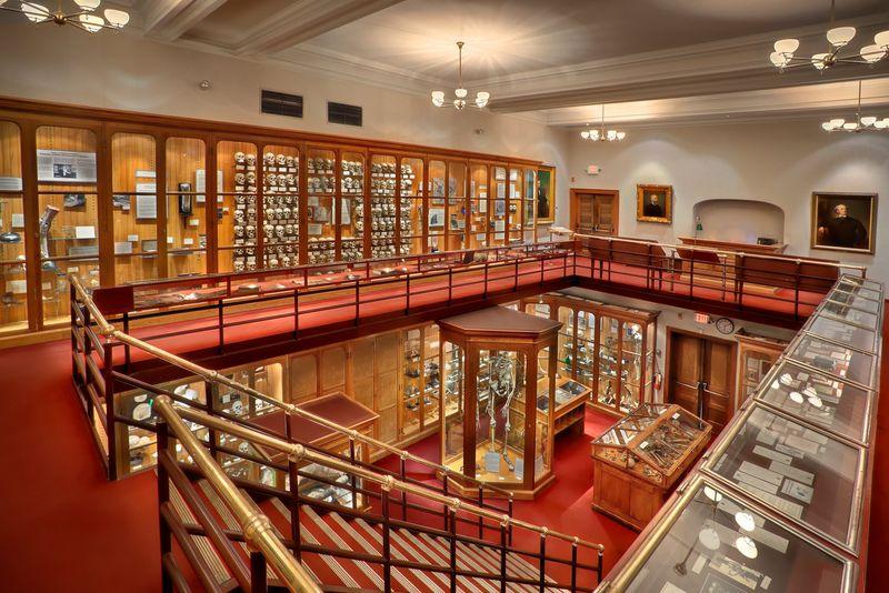 Museum ini bernama Mutter Museum, museum kesehatan yang berada di di 19 S 22nd Street, Philadelphia, Pennsylvania, Amerika Serikat (Mutter Museum of The College of Physicians of Philadelphia/ Facebook)