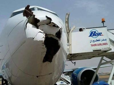 Istilah Bird Strike dalam Dunia Penerbangan dan Cara Mengatasinya