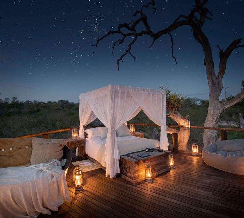 Adalah Chalkley Treehouse, sebuah penginapan yang dibuat Lion Sands terletak di Kruger National Park, Afrika Selatan (Lion Sands)