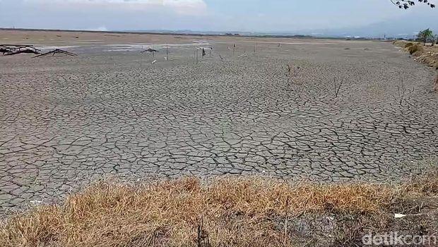 Dulunya rumah-rumah warga, kini endapan lumpur yang tinggi