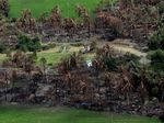 HRW: Hampir 300 Desa Rohingya Telah Dibakar Sejak Agustus