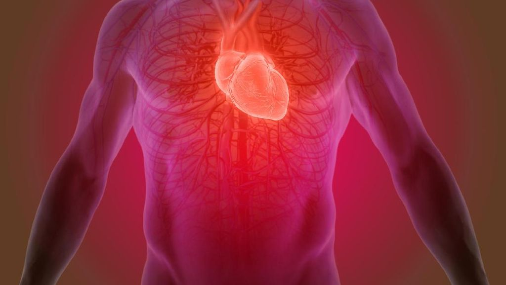 Canggih! Kecerdasan Buatan Google Bisa Deteksi Penyakit Jantung