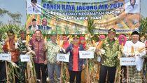 Hadiri Panen Raya di Lamongan, Ketua MUI Dukung Pemberdayaan Umat