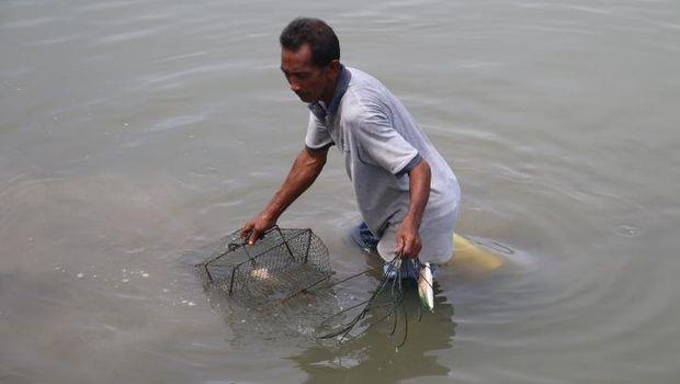 Bule-bule Ikutan Wisata Tangkap Kepiting di Aceh