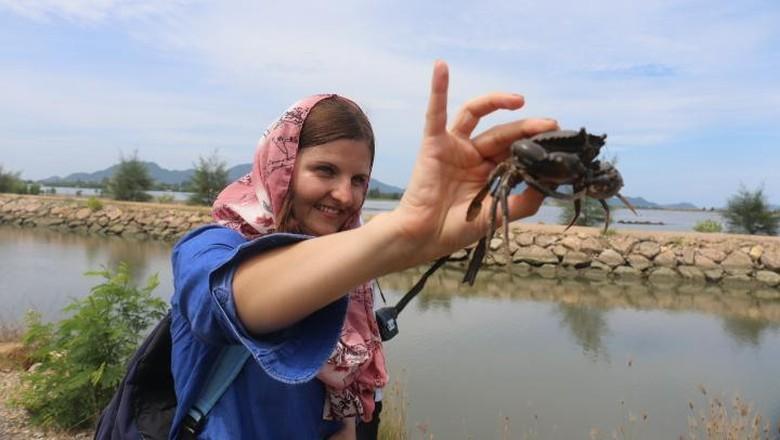 Foto: Turis bule ikut menangkap kepiting di Banda Aceh (Agus Setyadi/detikTravel)