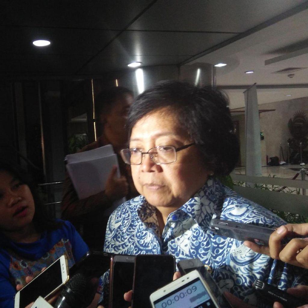 Menteri Siti: Bangkai Orangutan Tanpa Kepala Diautopsi Hari Ini