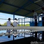 Jokowi Siapkan Tanjung Selor Jadi Kota Mandiri di Perbatasan