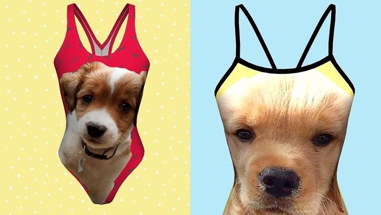 Baju renang bergambar wajah hewan peliharaan kesayangan (petflair/Instagram)