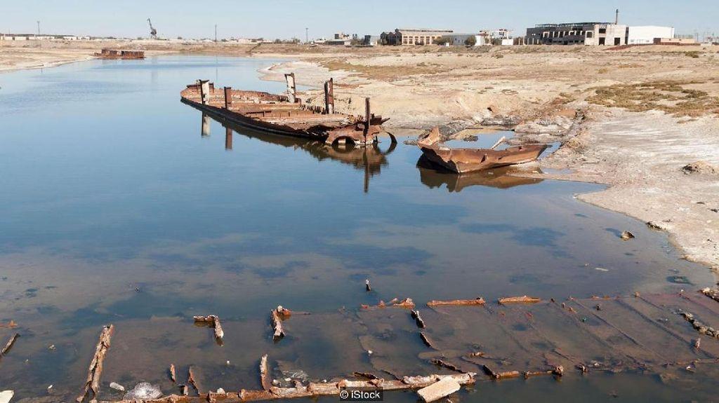 Vozrozhdeniya: Pulau Tak Berpenghuni Sarang Patogen-patogen Berbahaya