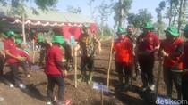 Kejar Target Swasembada, 20 Provinsi Tanam Kedelai Serentak