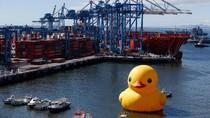 Bebek Raksasa Tiba-tiba Muncul di Pelabuhan, Kok Bisa?