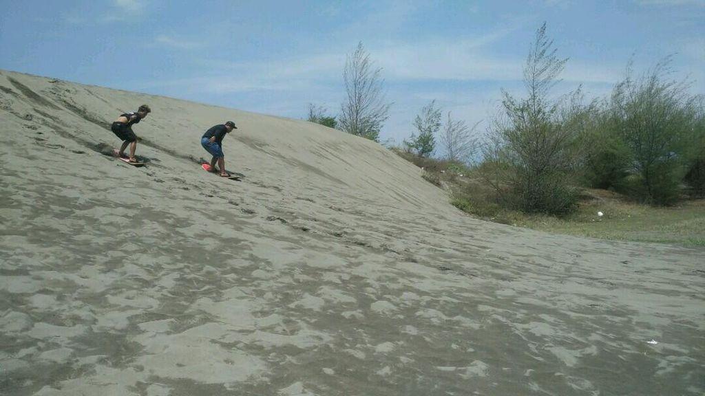 Bisa! Serunya Main Selancar di Atas Pasir