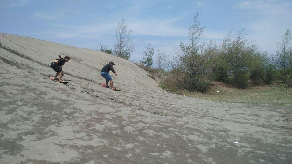 Foto: Main Sandboarding di Gumuk Pasir Parangkusumo, Sudah Coba?