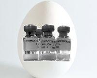 Peniliti Jepang Kembangkan Ayam Penghasil Telur dengan Kandungan Obat Penting