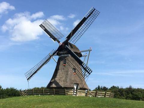 Destinasi Oke Saat Liburan ke Belanda Bareng si Kecil