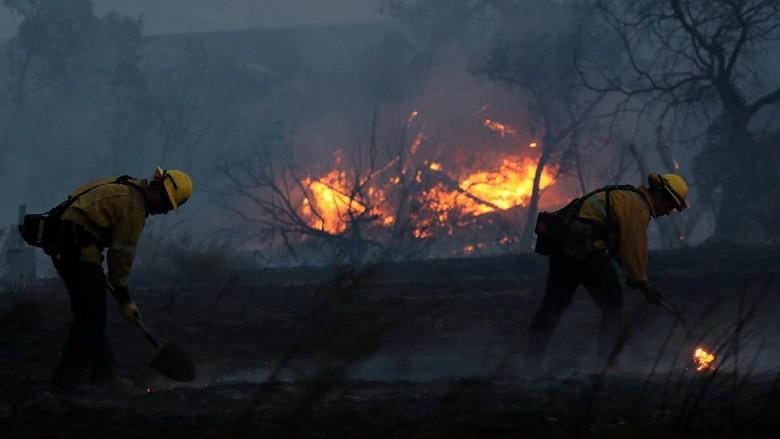 Kebakaran Sentra Anggur California Tewaskan 21 Orang, 550 Orang Hilang