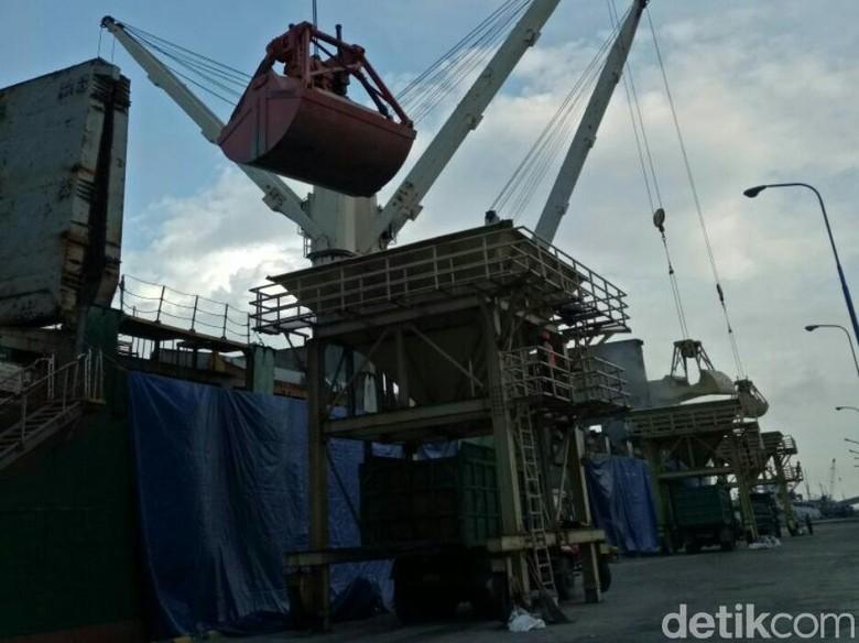 16.400 Kedelai Curah Impor Tiba di Pelabuhan Tanjungwangi