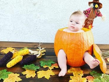 Lucu banget sampai masuk ke dalam pumpkin! (Foto: Instagram @aktrink8)