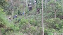 Tinjau Gunung Rakutak Bandung, KLHK: Kodisi Hutan Rusak