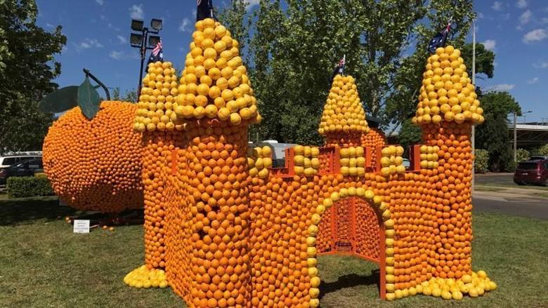 70 Patung Jeruk Raksasa Meriahkan Festival Musim Semi di Griffith NSW