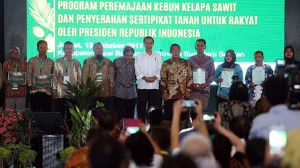 Jokowi Hadiri Program Peremajaan Kebun Kelapa Sawit
