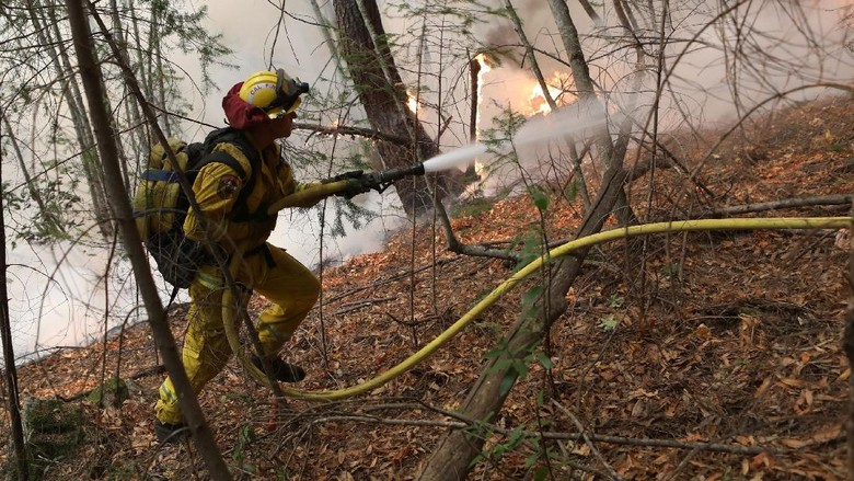 Epik! Aksi Heroik Petugas Damkar Jinakkan Api di California