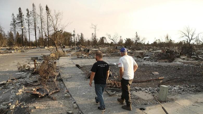 Korban Tewas Kebakaran Sentra Anggur California 31 Orang, Ratusan Hilang