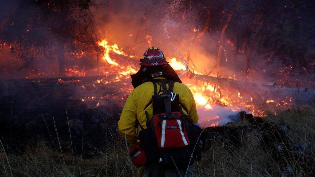 Korban Tewas Kebakaran Sentra Anggur California Jadi 40 orang