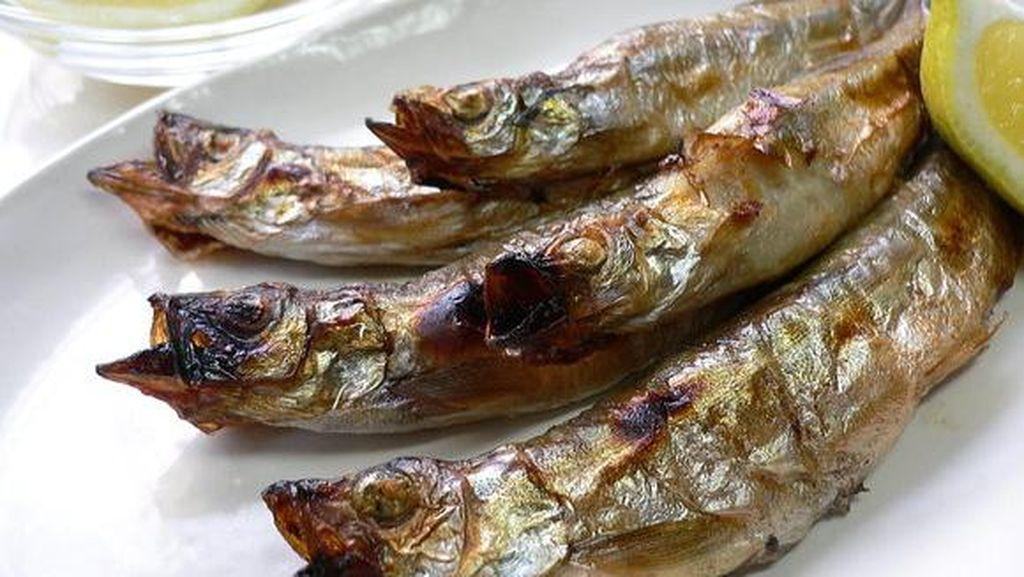 Ribut-ribut Pilih Sumber Protein, Kamu Tim Susu atau Tim Ikan?