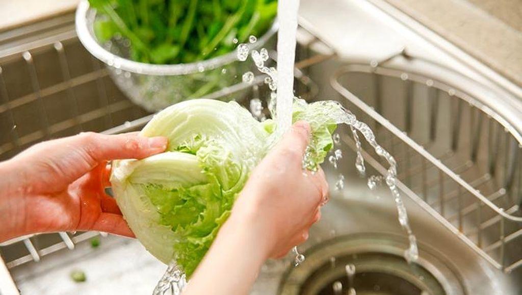 Begini 5 Cara Bersihkan Sayuran Menurut Para Ahli