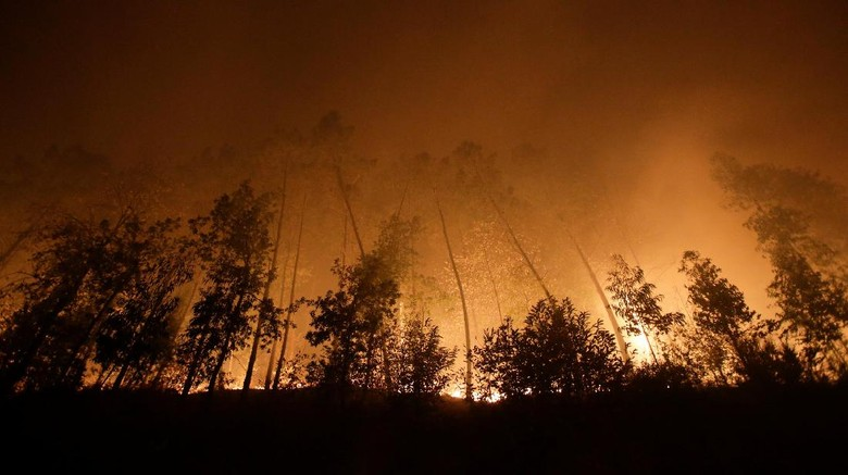 Korban Kebakaran Hutan di Portugal dan Spanyol Menjadi 34 Orang