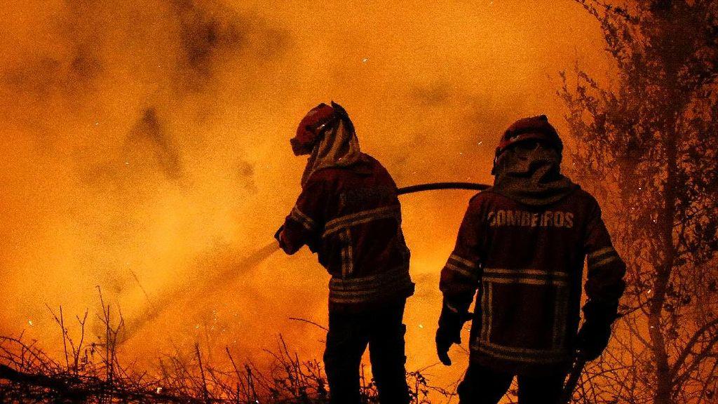 Kebakaran Hutan Tewaskan 41 Orang, Mendagri Portugal Mundur